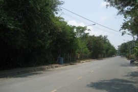 Land for sale in South Pattaya, Pattaya