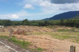 Land for sale in Pa Khlok, Thalang