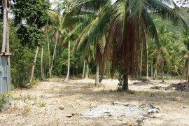 Land for sale in Bang Rak, Ko Samui