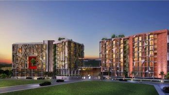 The Emerald City Life Patong