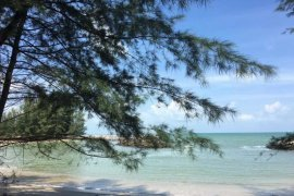 Land for sale in Sao Phao, Sichon