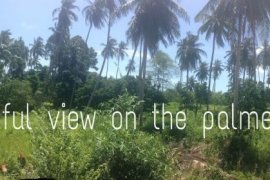 Land for sale in Mae Nam, Ko Samui
