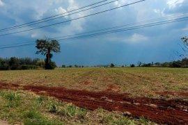Land for sale in Khlong Muang, Nakhon Ratchasima