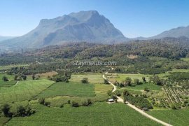 Land for sale in Chiang Dao, Chiang Mai