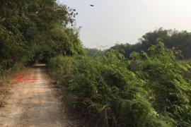 Land for sale in Krok Phra, Nakhon Sawan