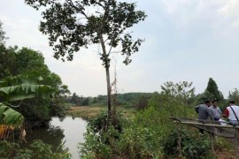 Land for sale in Saen Tung, Trat