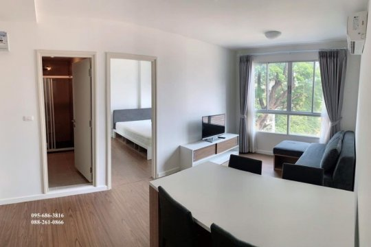 Condos For Rent In Chiang Mai Thailand Property