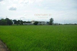 Land for sale in Sena, Phra Nakhon Si Ayutthaya