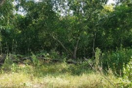Land for sale in Khlong Ha, Pathum Thani
