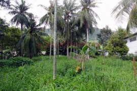 1 Bedroom Land for sale in Ko Chang, Trat