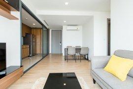 2 Bedroom Condo for Sale or Rent in Taka Haus Ekamai 12, Khlong Tan Nuea, Bangkok