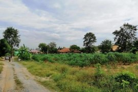 Land for sale in Pong, Chonburi