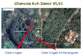 Land for sale in Lamai, Surat Thani
