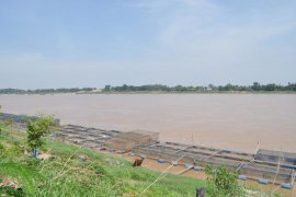 Land for sale in Hin Ngom, Nong Khai