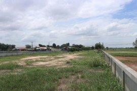 Land for sale in Nong Mek, Maha Sarakham