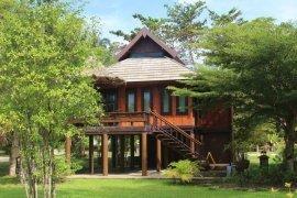 1 Bedroom House for rent in Bang Muang, Phang Nga