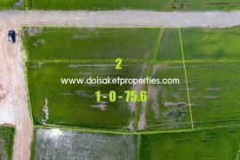 Land for sale in Luang Nuea, Chiang Mai