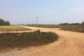 Land for sale in Rai Mai Phatthana, Phetchaburi