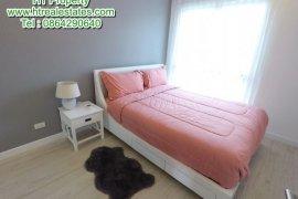 1 Bedroom Condo for Sale or Rent in The Spring Condo Chiangmai, Fa Ham, Chiang Mai