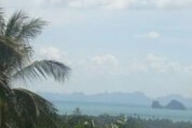 Land for sale in Taling Ngam, Surat Thani