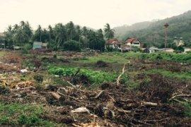 Land for sale in Bang Tao, Phuket