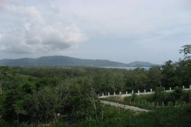 Land for sale in Layan, Phuket