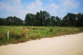 Land for sale in Bo Win, Chonburi