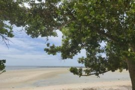 Commercial for sale in Ko Samui, Surat Thani