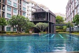D Condo Mine - Phuket, Phuket - 40 Condos for sale and rent