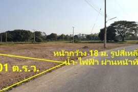 Land for sale in Makhun Wan, Chiang Mai