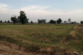 Land for sale in Lak Khet, Buriram
