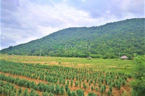 Land for sale in Pran Buri, Prachuap Khiri Khan