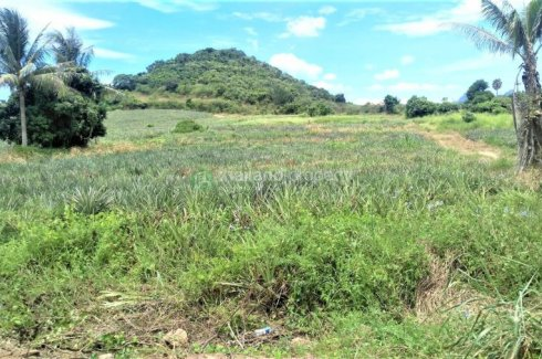 Land for sale in Sam Roi Yot, Prachuap Khiri Khan