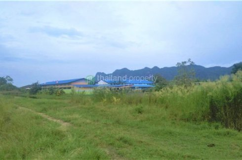 Land for sale in Pran Buri, Prachuap Khiri Khan